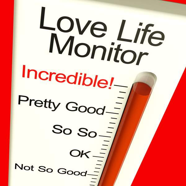 love life monitor - illustrates idea of relational needs